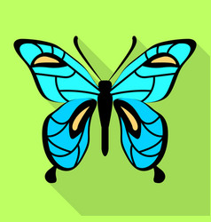 sky blue butterfly icon flat style vector image