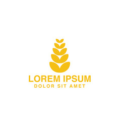 wheat grain agriculture farm logo designs vector image