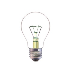 Light Bulb Isolated on White Background vector image