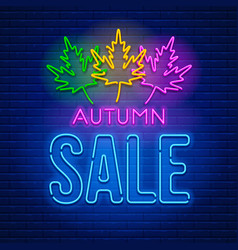neon sign autumn sale vector image