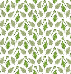 Seamless pattern with poppy heads and leaves vector