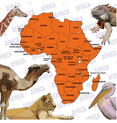 Background with continent of africa vector