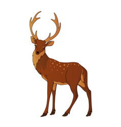 deer isolated vector image
