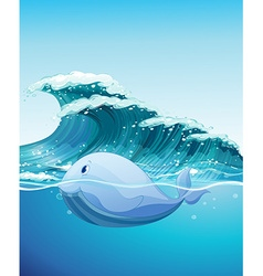 Dolphine swimming under the sea vector