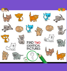 Find two identical kitten pictures game for kids vector