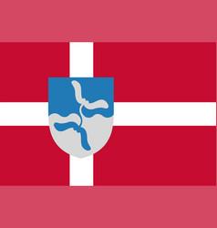 Flag of vejen in southern denmark region vector
