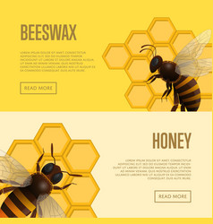 Fresh honey and beeswax retail banners vector