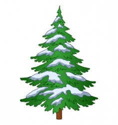 Fur tree under the snow vector