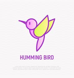 Hummingbird thin line icon vector