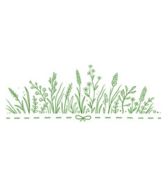 pattern with wild flowers vector image