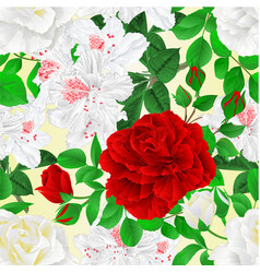 seamless texture white and red roses with buds vector image