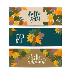 Set three autumn sale banner with leaves vector