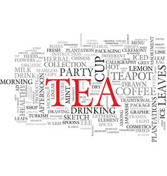 tea word cloud concept vector image