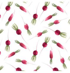 watercolor radish seamless pattern vector image