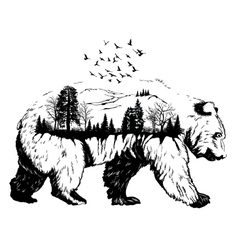 Double exposure Hand drawn bear vector image vector image