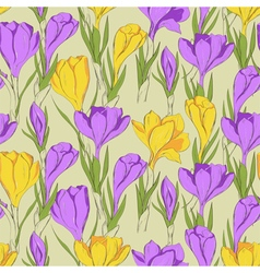 crocus seamless patterm 2 purple yellow vector image vector image