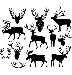 Black silhouettes of deers and deer horns vector