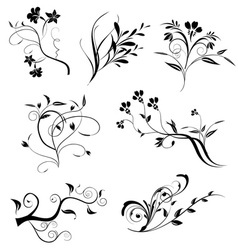 Floral elements in various styles vector