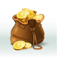 golden coins bag gold coin in old antique sack vector image