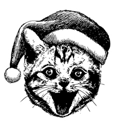 Little cat with christmas hat vector