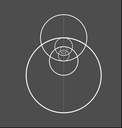 Minimalistic style design golden ratio geometric vector