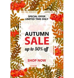 seasonal autumn sale vertical banner vector image