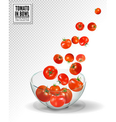 tomatoes falling into glass bowl realistic vector image