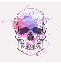 human skull with watercolor splash vector image