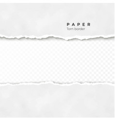 horizontal torn paper edge paper texture rough vector image