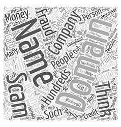 Scam Domain Names Word Cloud Concept vector image vector image
