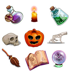 halloween symbols - skull book pumpkin and other vector image vector image