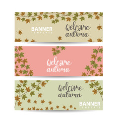 autumn banners with color leaves collection of vector image
