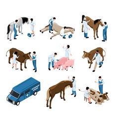 Farm veterinary isometric set vector