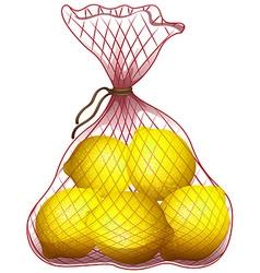 Fresh lemon in net bag vector