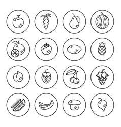 Fruits and vegetables outline icon set vector