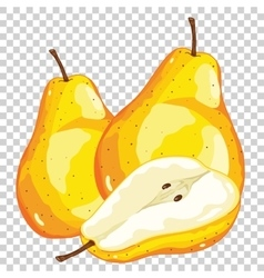 Pear Isolated vector image