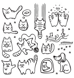scetched doodle cat vector image