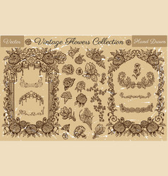 vintage collection with flowers and frames vector image