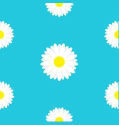 white daisy chamomile marguerite icon seamless vector image