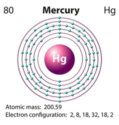 Diagram representation of the element mercury vector image vector image
