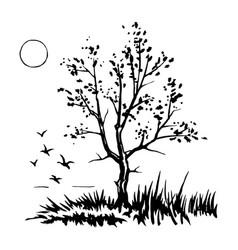 tree silhouette sketch vector image