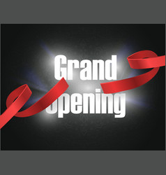 grand opening background with lettering sign vector image vector image