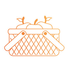 basket with apples icon vector image