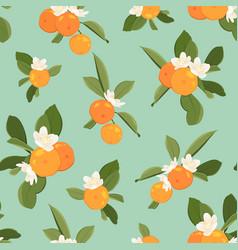 orange tangerine mandarin clementine green leaves vector image