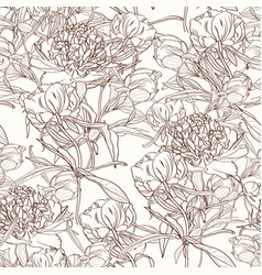 peony flowers seamless pattern texture vector image