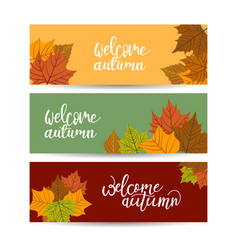 Set three backgrounds with autumn leaves and vector