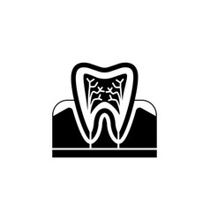tooth anatomy solid icon vector image