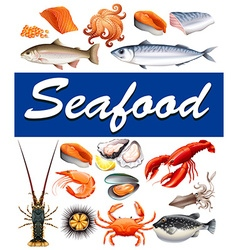 Different kind of seafood and text vector