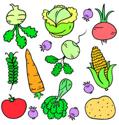 Vegetable various set of doodles vector