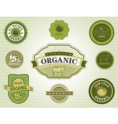 Set of organic food labels vector image